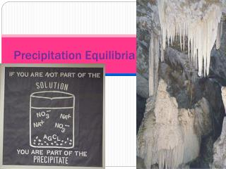 Precipitation Equilibria
