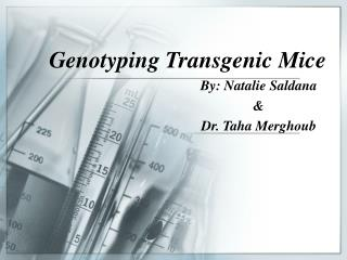 Genotyping Transgenic Mice