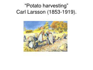 """Potato harvesting""  Carl Larsson (1853-1919)."