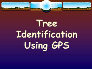 Tree Identification Using GPS