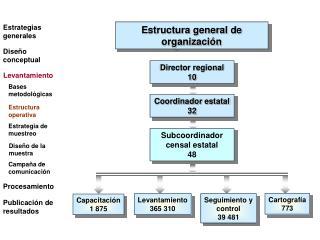 Coordinador estatal 32