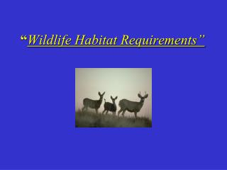 """ Wildlife Habitat Requirements"""