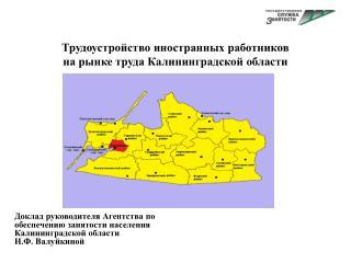 Трудоустройство иностранных работников на рынке труда Калининградской области