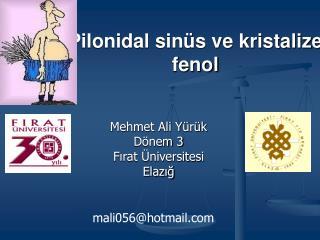 Pilonidal sinüs ve kristalize fenol