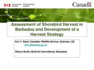 Assessment of Shorebird Harvest in Barbados and Development of a Harvest Strategy