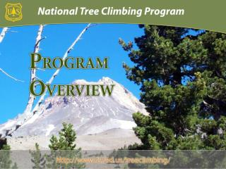 To ensure the safety of USFS tree climbers and the integrity of existing climbing activities.