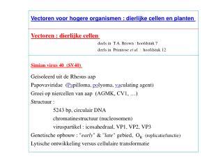 Vectoren voor hogere organismen : dierlijke cellen en planten  Vectoren : dierlijke cellen