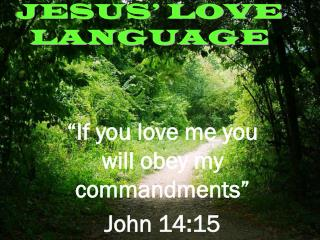 JESUS' LOVE LANGUAGE