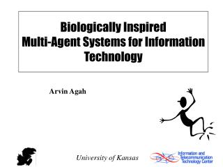 Biologically Inspired  Multi-Agent Systems for Information Technology