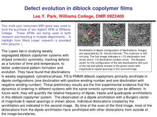 Defect evolution in diblock copolymer films Lee Y. Park, Williams College, DMR 0922400