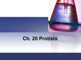 Ch. 20 Protists