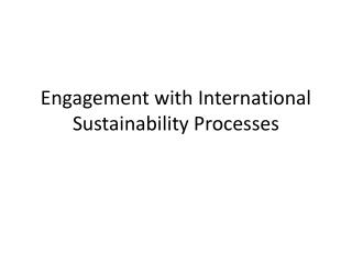 Engagement with International Sustainability Processes