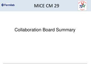 MICE CM 29