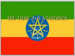Die Tiere Aus  Äthiopien