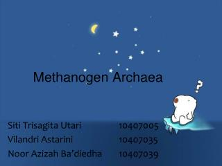 Methanogen Archaea