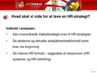 Hvad skal vi vide for at lave en HR-strategi?