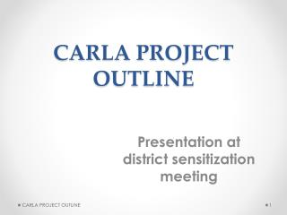 CARLA PROJECT OUTLINE