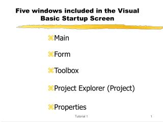 Five windows included in the Visual Basic Startup Screen
