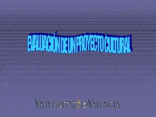 EVALUACIÓN DE UN PROYECTO CULTURAL