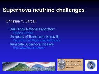 Supernova neutrino challenges