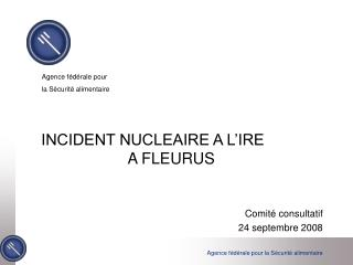 INCIDENT NUCLEAIRE A L'IRE                     A FLEURUS