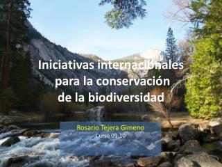 Iniciativas internacionales para  la  conservación de la  biodiversidad