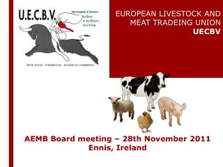 AEMB  Board meeting  – 28th November 2011  Ennis , Ireland