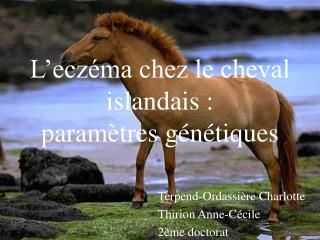 L'eczéma chez le cheval islandais : paramètres génétiques
