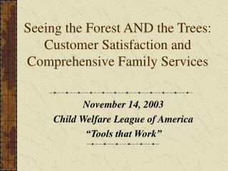 Seeing the Forest AND the Trees: Customer Satisfaction and Comprehensive Family Services