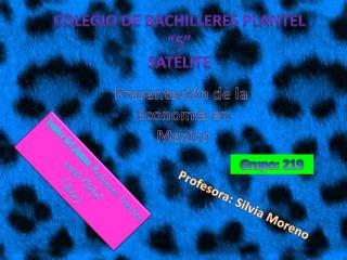 "Colegio de bachilleres plantel ""5"" satélite"