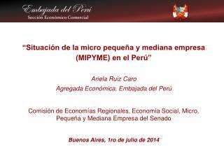 �Situaci�n de la micro peque�a y mediana empresa (MIPYME) en el Per� Ariela Ruiz Caro