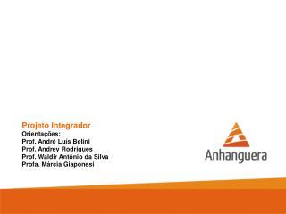 Projeto Integrador Orientações: Prof. André Luís Belini Prof. Andrey Rodrigues