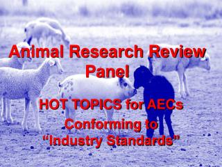 Animal Research Review Panel