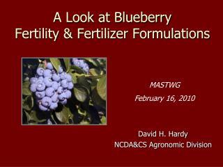 A Look at Blueberry  Fertility & Fertilizer Formulations