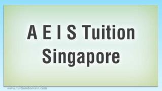ppt 18450 A E I S Tuition Singapore