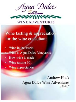 Wine tasting & appreciation for the wine consultant