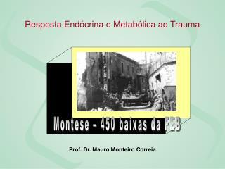 Prof. Dr. Mauro Monteiro Correia