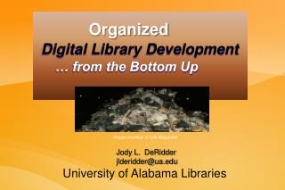 Organized    Digital Library Development        … from the Bottom Up
