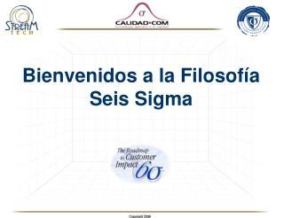 Bienvenidos a la Filosof a Seis Sigma