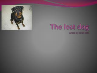The lost dog wrote by  S arah Ellis
