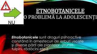 Etnobotanicele O problemă la adolescenți