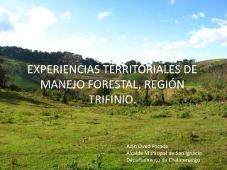 EXPERIENCIAS TERRITORIALES DE MANEJO FORESTAL, REGIÓN TRIFINIO.