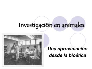 Investigaci n en animales
