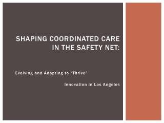 Shaping Coordinated Care in the Safety Net: