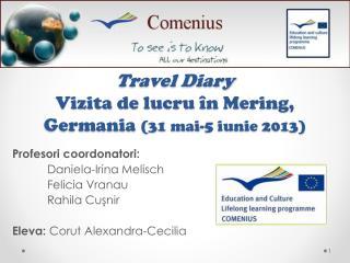 Travel Diary Vizita  de  lucru î n  Mering ,  Germania (31 mai-5 iunie 2013)