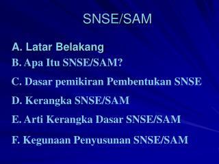 SNSE/SAM