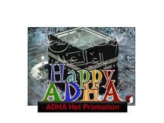 ADHA Hot Promotion