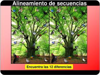 Encuentra las 12 diferencias