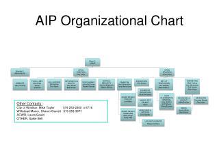 AIP Organizational Chart