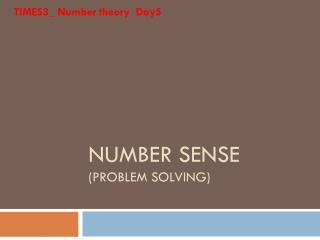 NUMBER SENSE (PROBLEM SOLVING)
